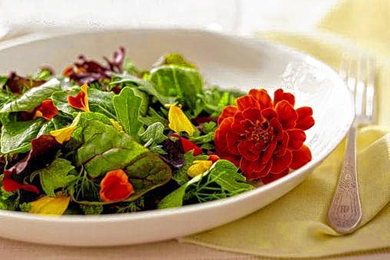 Salada de Folhas com Flores